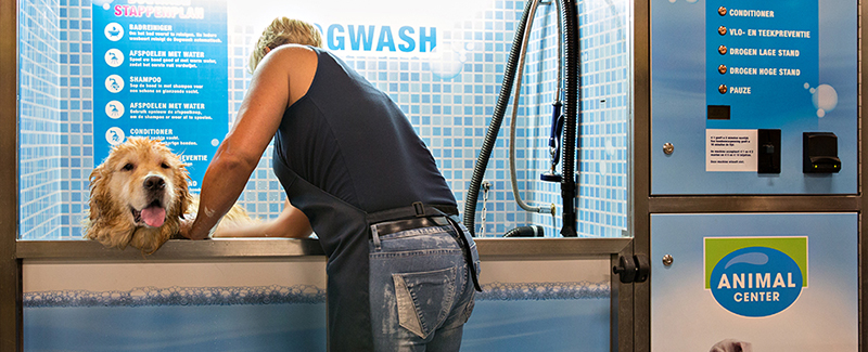 Makkelijk je hond wassen én drogen in onze Dogwash